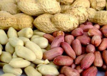 Два китайца пытались провезти в Благовещенск сомнительный арахис
