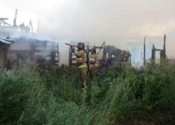 В Свердловской области овчарка спасла многодетную семью на пожаре