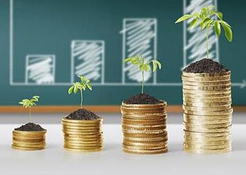 Притока новых иностранных инвесторов ждут в Амурской области