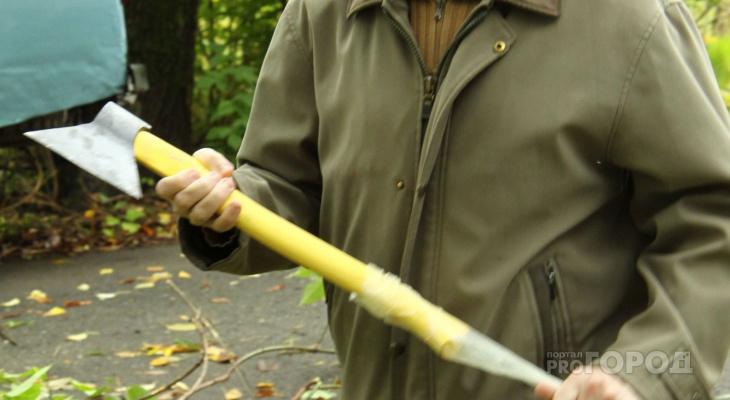 В «Ельниковской роще» расследуют вырубку деревьев