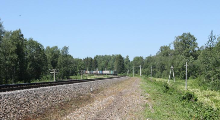 Мужчина из Чувашии погиб, попав под скоростной поезд