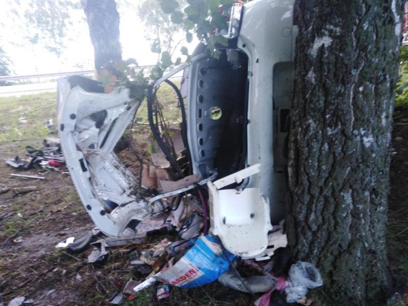В Чебоксарском районе RenaultLogan влетел в дерево, два человека погибли