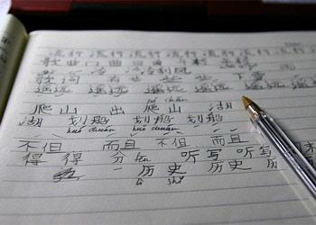 Все амурские выпускники справились с ЕГЭ по китайскому на «хорошо» и «отлично»