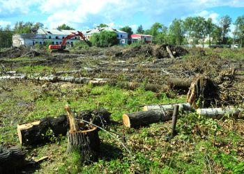 В Свободном расчистили площадку для строительства новой школы