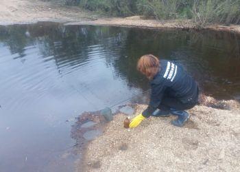 Цианидов в почве в пострадавших от паводка селах не обнаружили