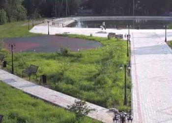 Велодорожку уложат в парке в Тамбовке