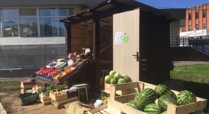 Комиссия накрыла нелегальных торговцев овощами у ДК «Салют»