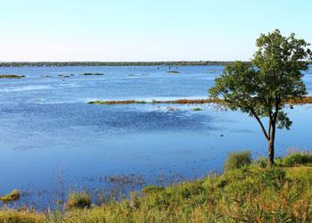 Активный спад воды на реках Приамурья начнется 7 августа