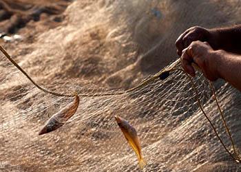 Рыбалка в водах Приамурья стоила китайским рыбакам свободы