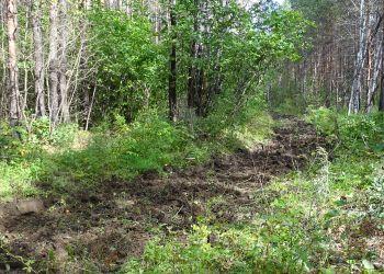 В амурских лесхозах готовятся к пожароопасному периоду
