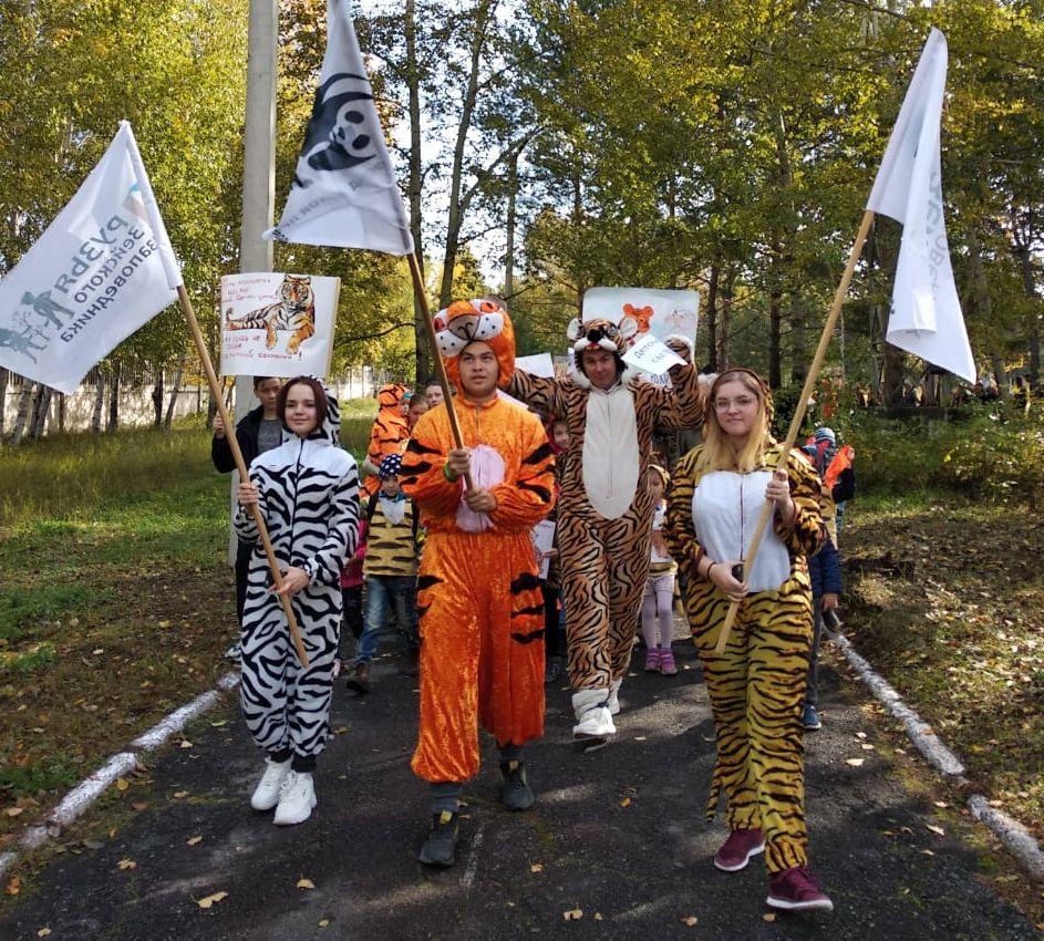 По Зее прошли большие и маленькие «тигры»