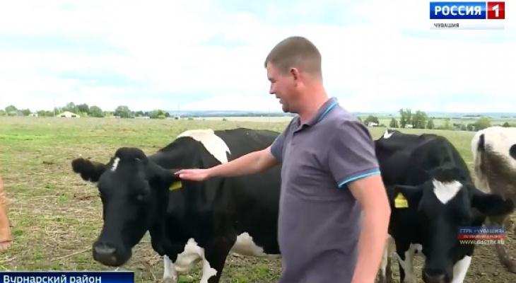 Фермер из Вурнарского района выиграл грант на 10 миллионов рублей