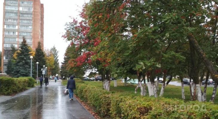 «Хмурый» осенний прогноз на среду в Чувашии