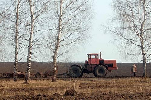 Амурские аграрии получат более трех миллиардов рублей