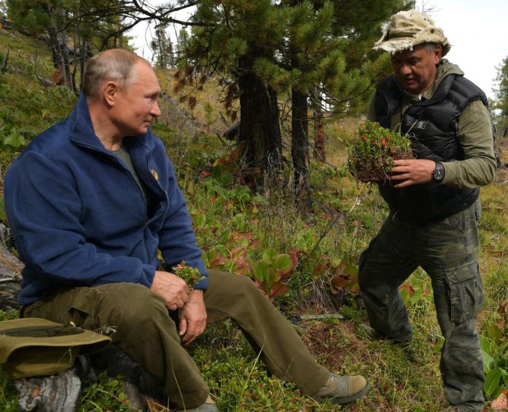 После сбора грибов в горах Путин отмечает день рождения: стало известно как