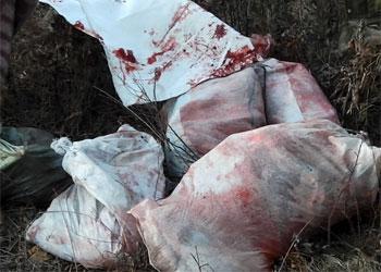 Амурчанин пытался выдать мясо убитой косули за баранину