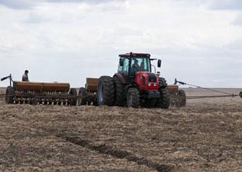Аграрии Приамурья в ближайшие пять лет планируют освоить все пахотные земли области