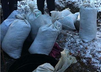В Бурейском районе нашли спрятанные 200 кило конопли