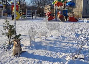 У оленей в парке Свободного повредили провода подсветки