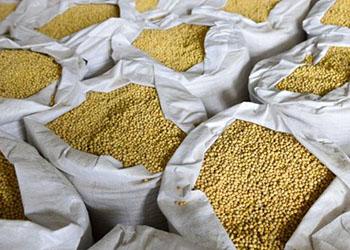 Более пяти тонн ворованной сои нашли в Ивановке полицейские