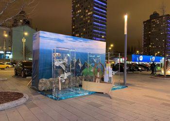В Москве открылась Дальневосточная ярмарка