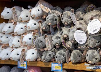 Благовещенск заполонили крысы и мыши