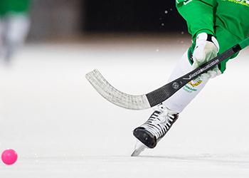 Суперкубок по хоккею с мячом, турнир по вольной борьбе и новогодняя выставка