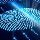 Грабителя в Благовещенске нашли по отпечатку пальца