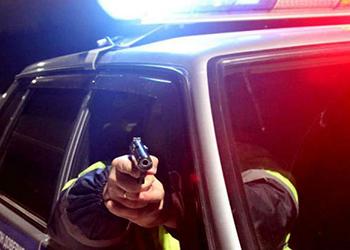 В Приамурье полицейские, пытаясь остановить лихача, стреляли по колесам